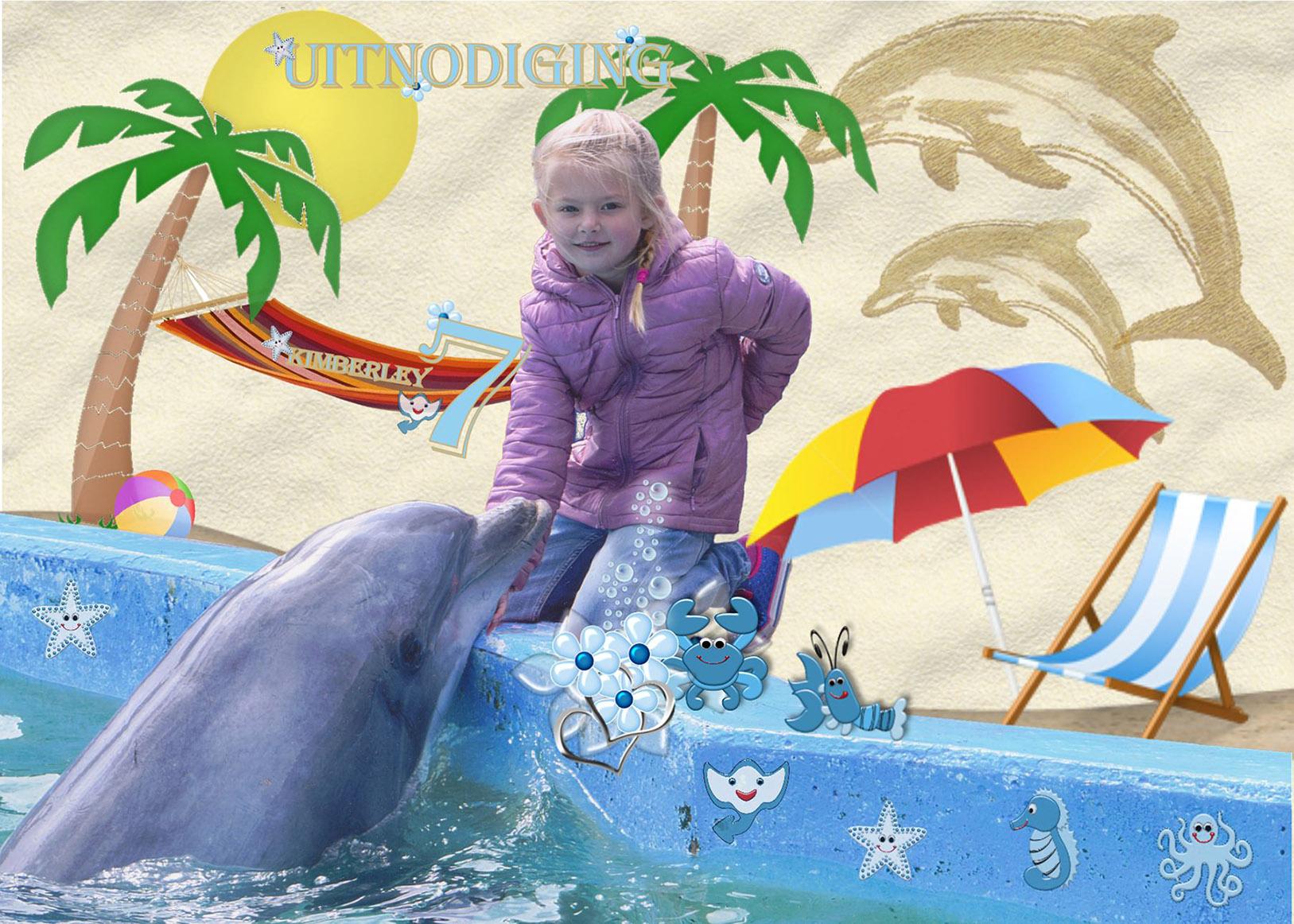 Dolfijn feestje