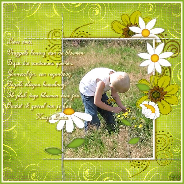 Bloemen voor oma ( les 19-1-09)